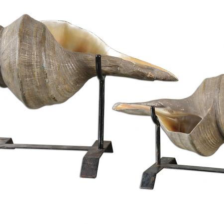 Conch Shell Heykel, S/2